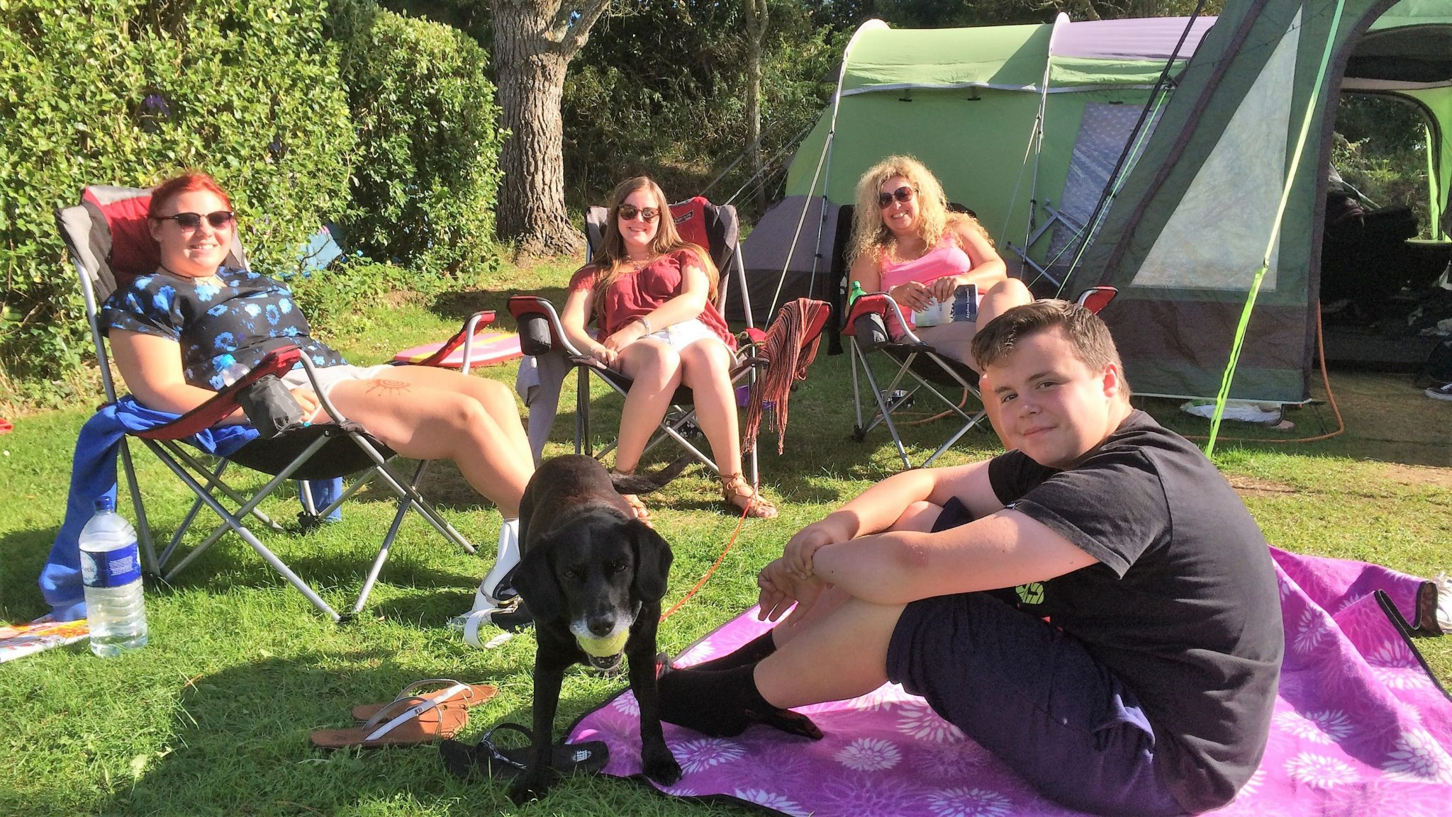 Dog Friendly Camp Site In Cornwall